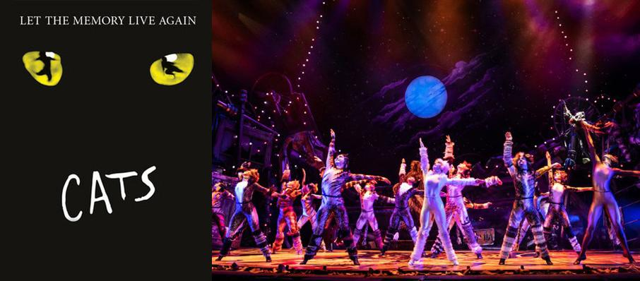 Cats at Orpheum Theatre
